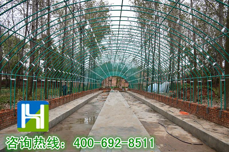 养殖大棚施工进程